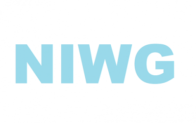 Nigerian Government and Industry Joint Working Group (NIWG) statement on maritime security collaboration